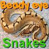 Beady Eye - Snakes