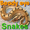 Play Beady Eye - Snakes game!