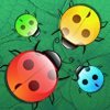 Play Beetles game!