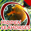 Hidden Seahorses game