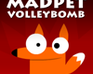 Madpet Volleybomb game
