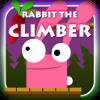 Play Rabbit The Climber game!