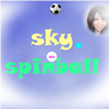 Sky Spinball game
