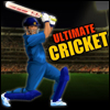 Play Ultimate Cricket game!