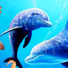 Play Under Water Fishes game!
